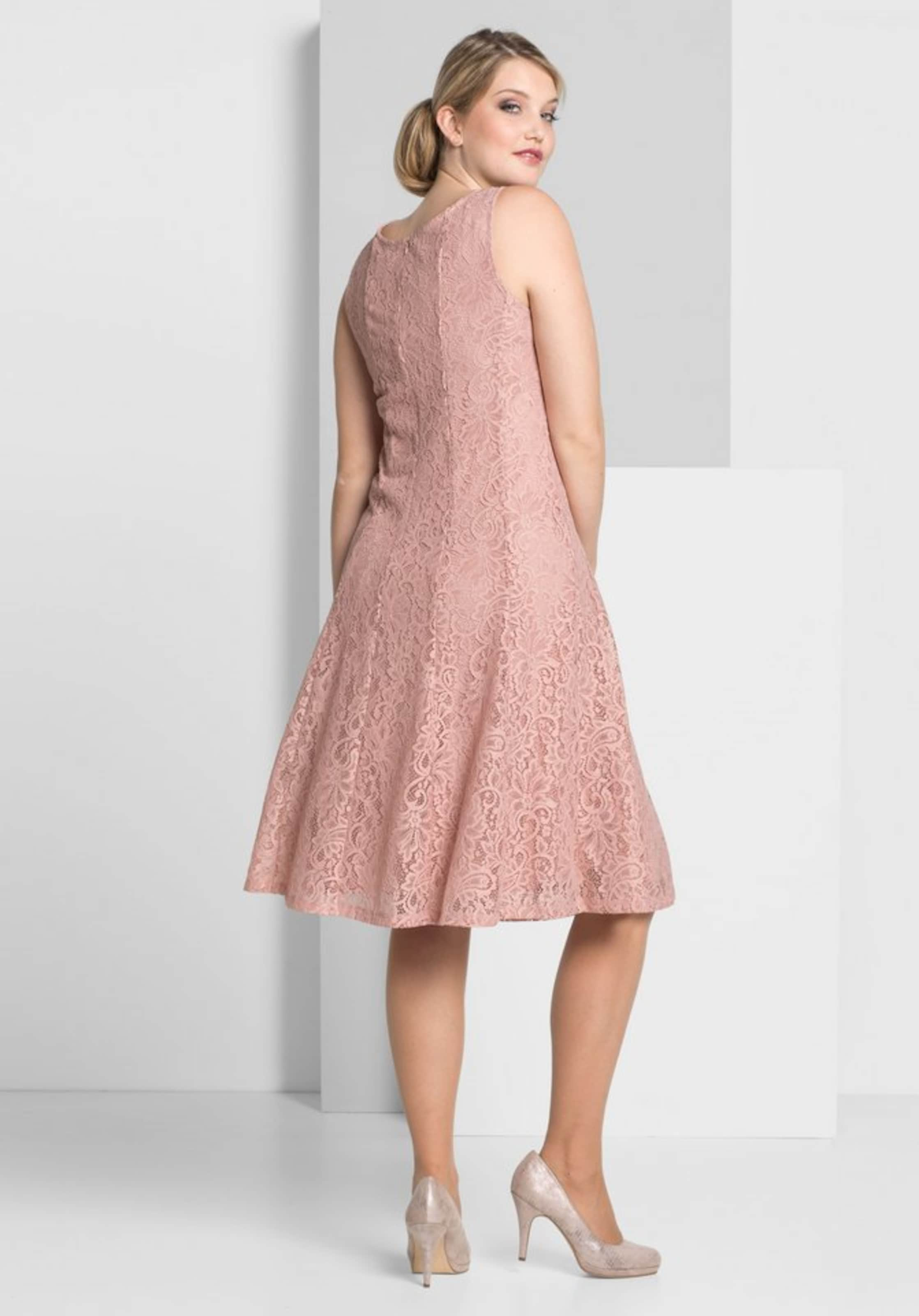 Style Style Sheego In Sheego Rosé Spitzenkleid Rosé In Spitzenkleid Spitzenkleid Style Sheego FTl3K1cJ