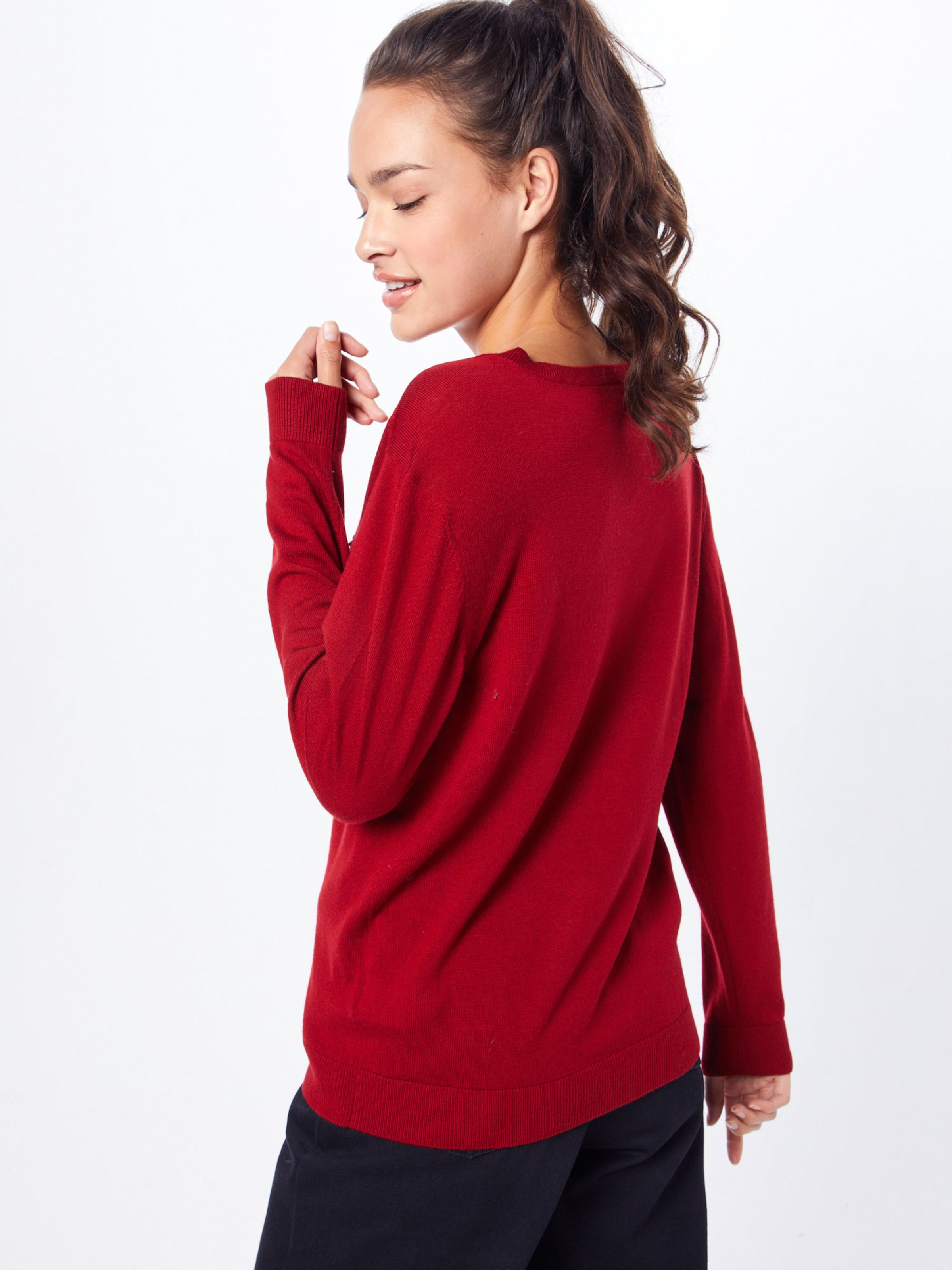'tricot' Lacoste over Rouge En Pull rBWedCox