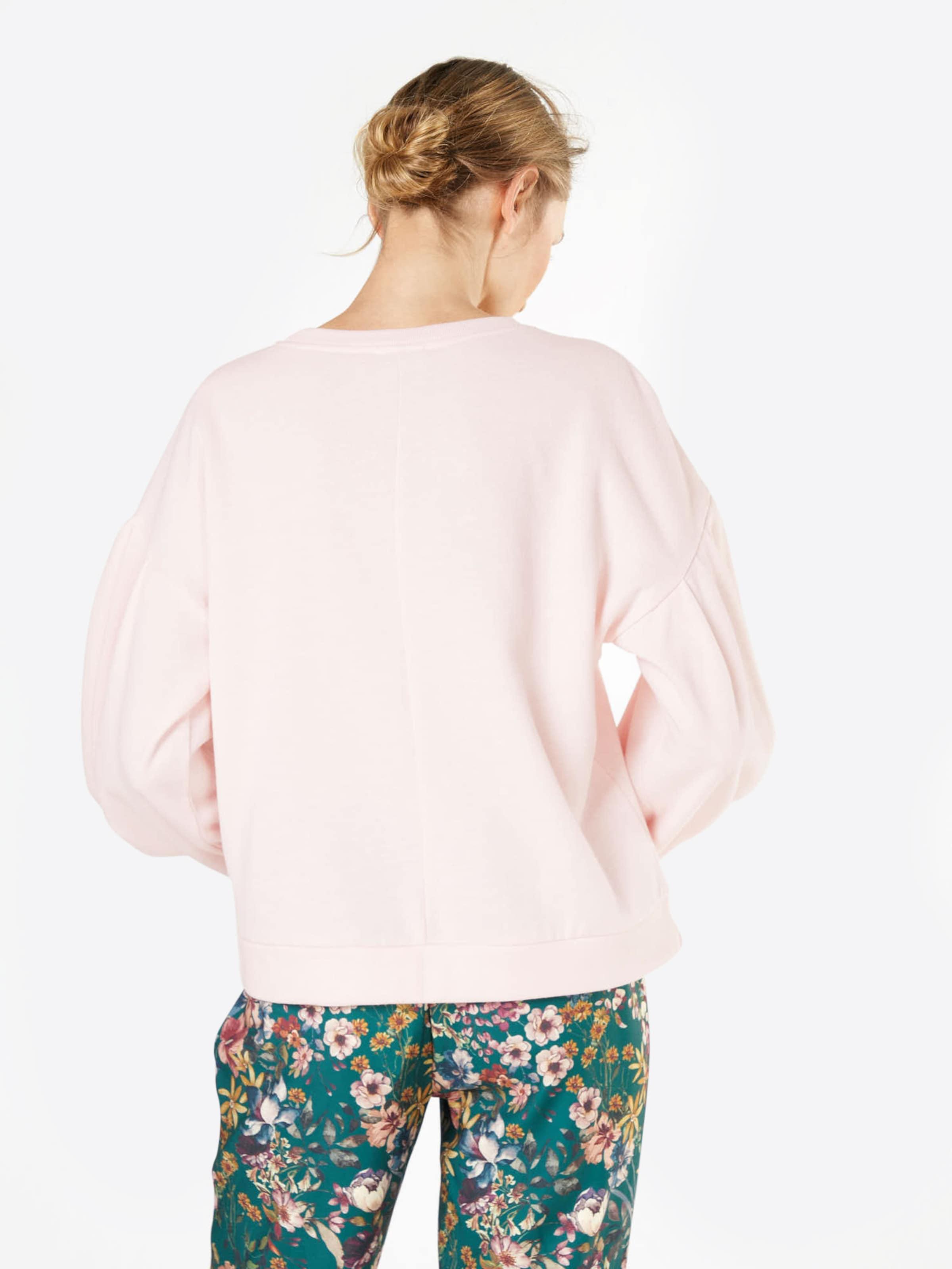 In Noisy Sweater May Rosa 'loui' 5j4ARL