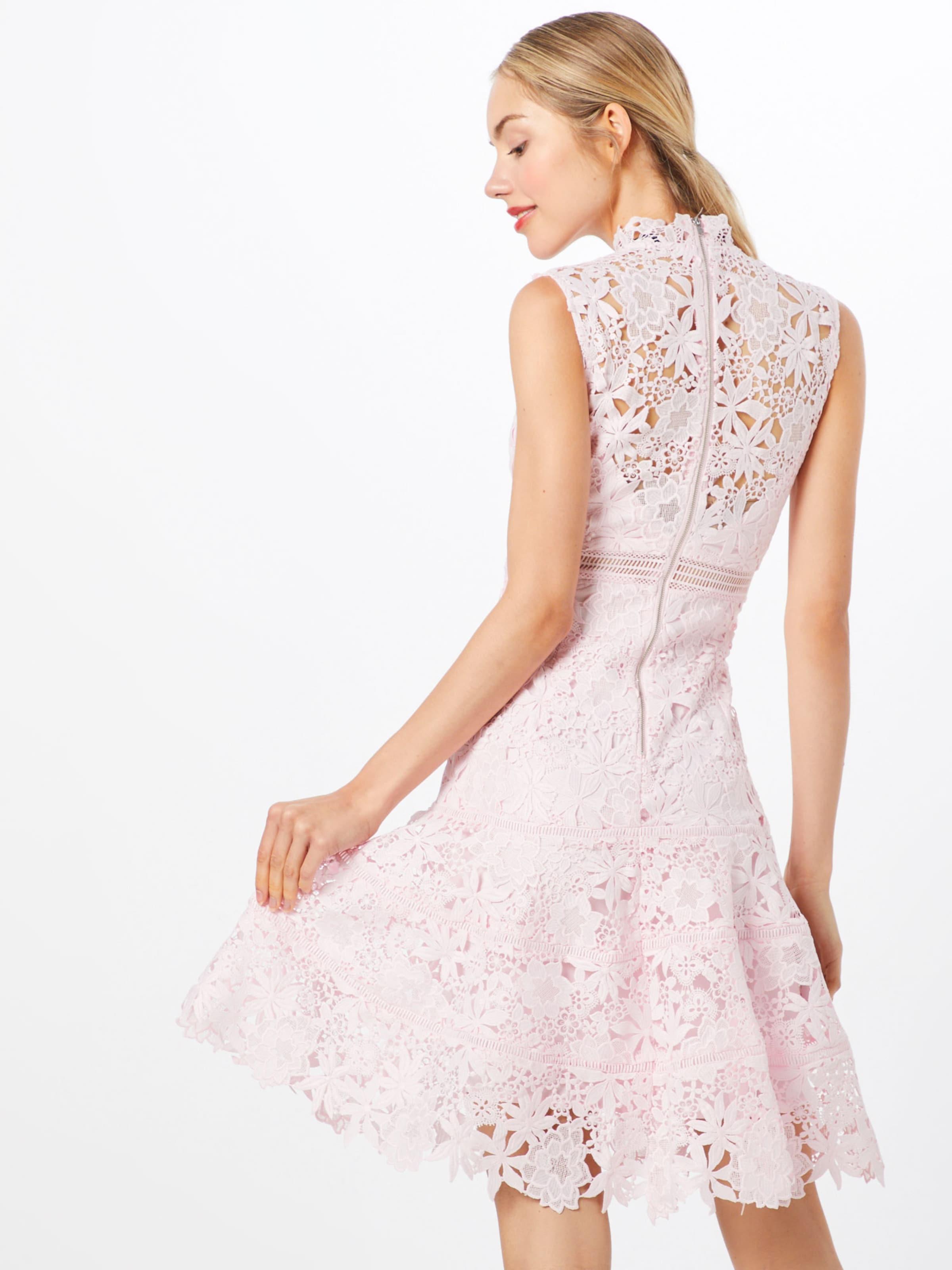 'elise' Rose 'elise' Rose Robe Bardot Bardot En En Robe Bardot QdCxeWroBE