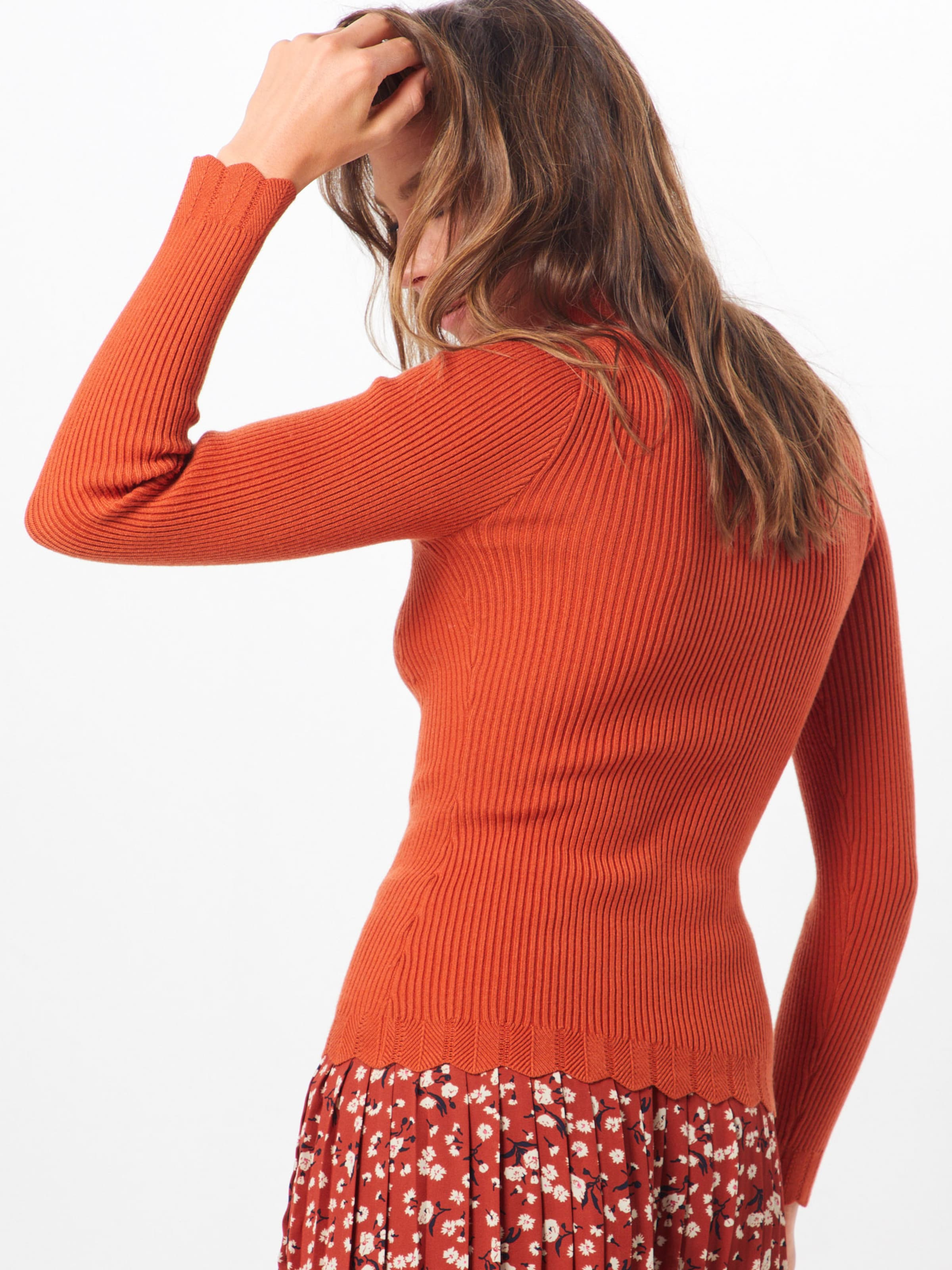 'gingy' In Orange Fashion Pullover Union rsQChdxt