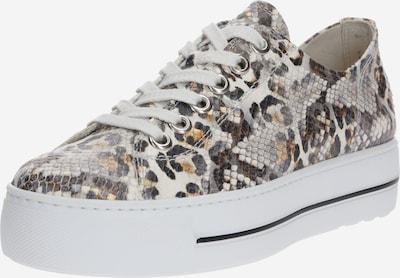 Paul Green Sneaker in beige / braun / weiß, Produktansicht
