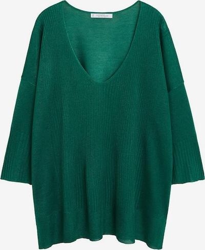 VIOLETA by Mango Pullover sugar in grün, Produktansicht