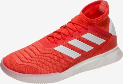 ADIDAS PERFORMANCE Sneaker 'Predator 19.1 Trainers Street' in rot / weiß: Frontalansicht