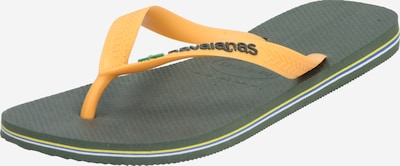 HAVAIANAS Zehentrenner 'BRASIL' in gelb / oliv, Produktansicht