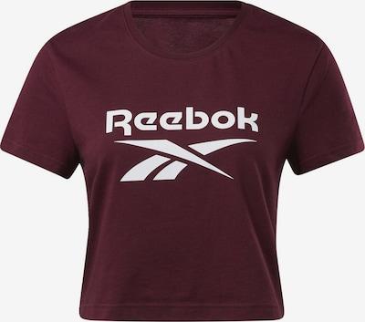 Reebok Classic Shirt in de kleur Bordeaux, Productweergave