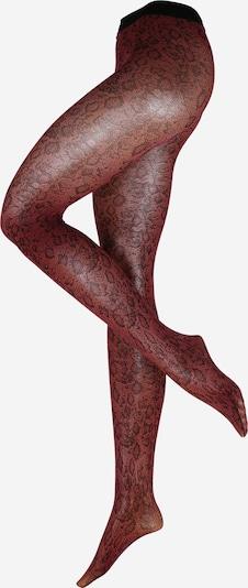 FALKE Hlačne nogavice 'Royal Scale 30 DEN' | rdeča barva, Prikaz izdelka