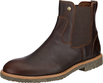 PANAMA JACK Chelsea Boots in Brown