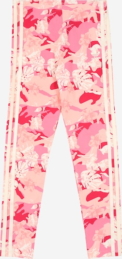 ADIDAS ORIGINALS Leggings in creme / rosa, Produktansicht
