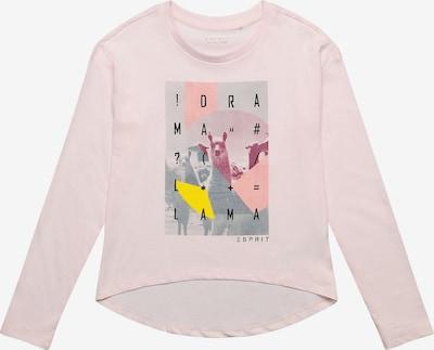 ESPRIT Koszulka w kolorze jasnoróżowym, Podgląd produktu