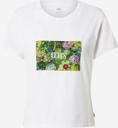 LEVI'S T-shirt en jade / vert gazon / violet / rouge clair / blanc, Vue avec produit