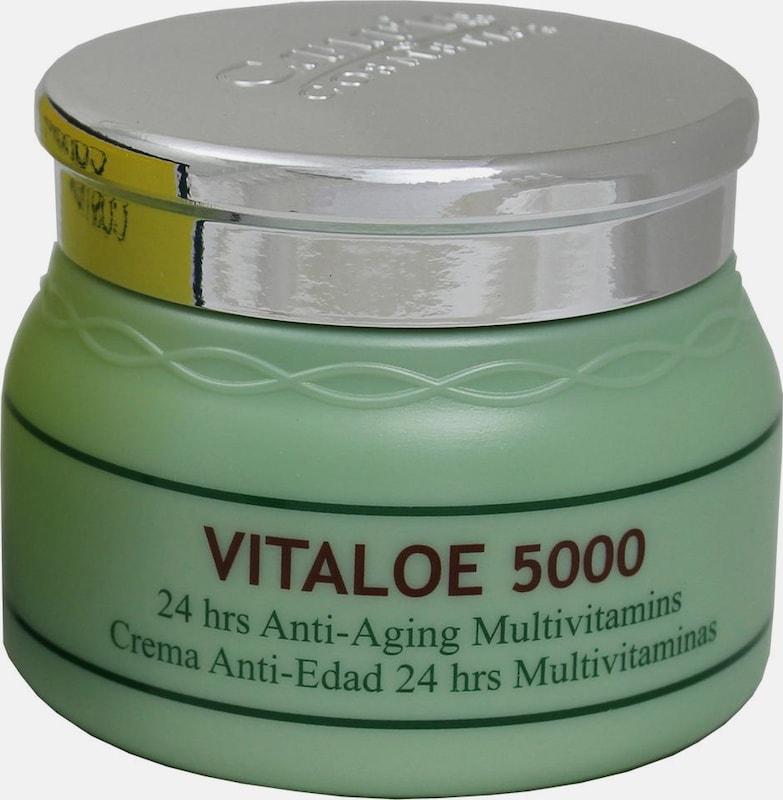 canarias cosmetics 'Vitaloe 5000', Anti-Aging Creme