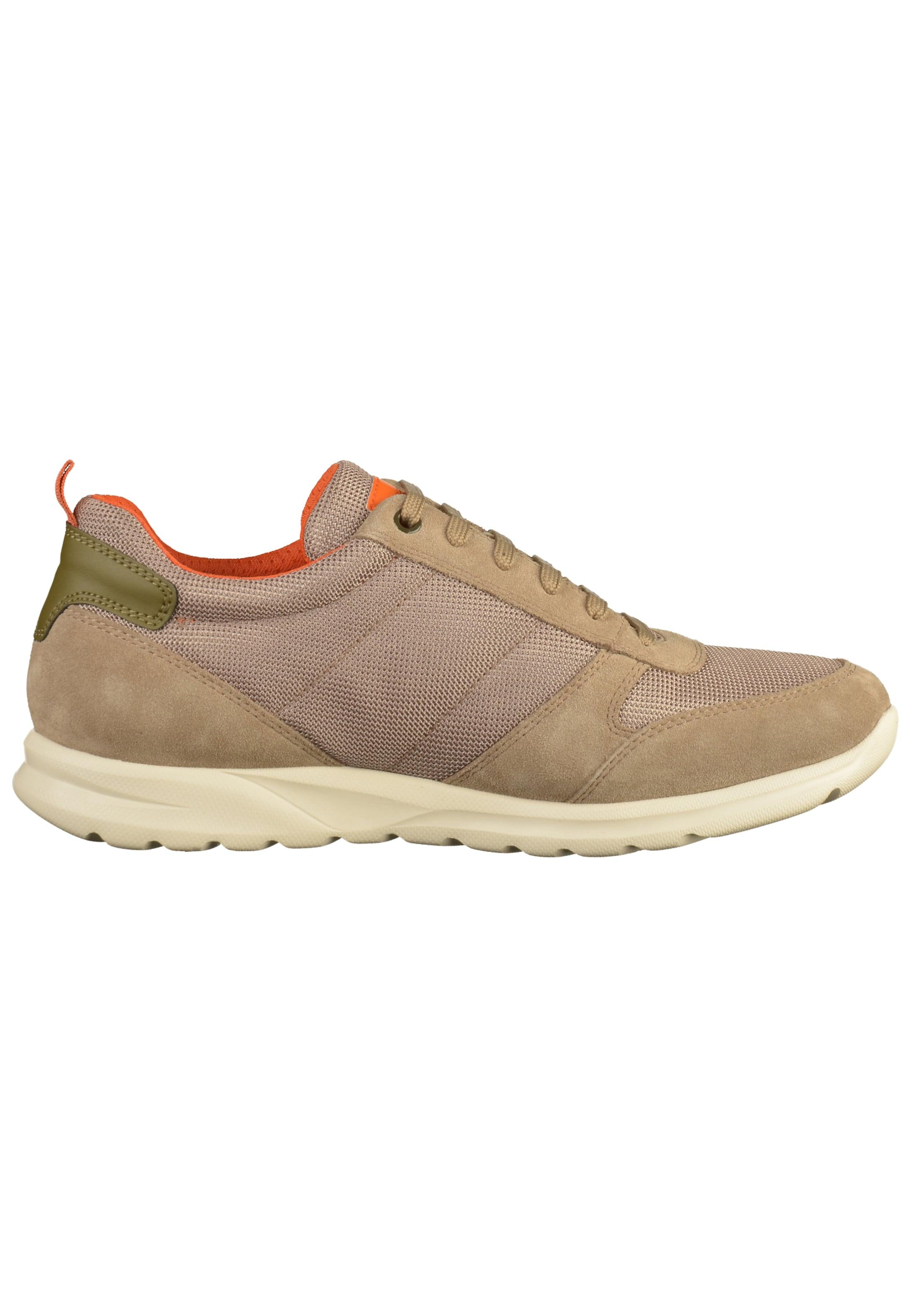 BeigeDunkelbeige Sneaker In Geox Geox BeigeDunkelbeige In BeigeDunkelbeige Geox Geox Sneaker Sneaker In gmyIbfY76v