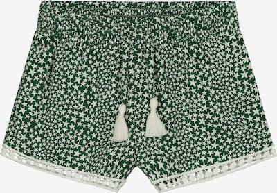 Shiwi Shorts 'Tuvalu' in grün, Produktansicht
