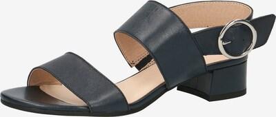 CAPRICE Klassische Sandaletten in schwarz, Produktansicht