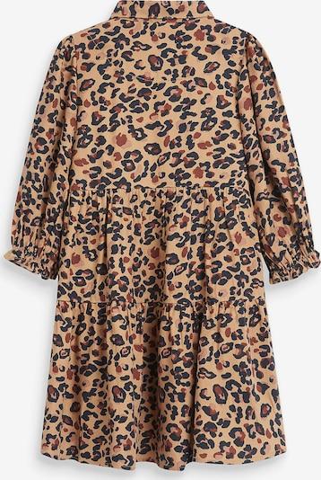 NEXT Kleid in braun: Frontalansicht