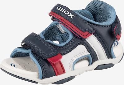 GEOX Sandale in blau / mischfarben, Produktansicht