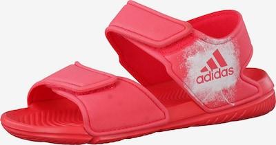 ADIDAS PERFORMANCE Sandalen 'AltaSwim' in de kleur Pitaja roze / Wit gemêleerd, Productweergave