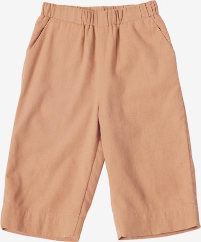Kelnės 'Riley' iš EDITED , spalva - ruda, Prekių apžvalga