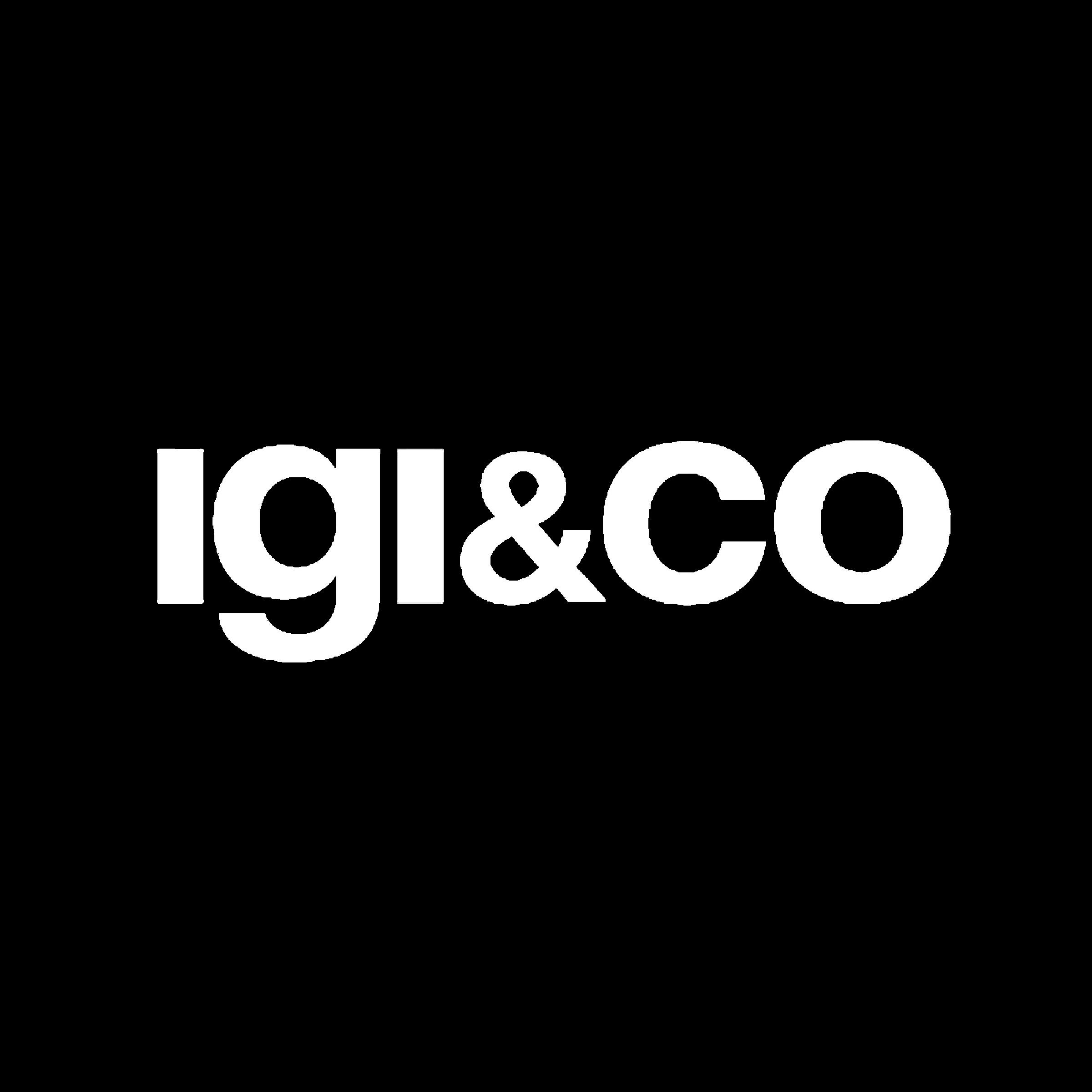IGI&CO Logo