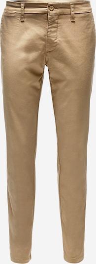 Carhartt WIP Chino 'Sid' in de kleur Bruin, Productweergave