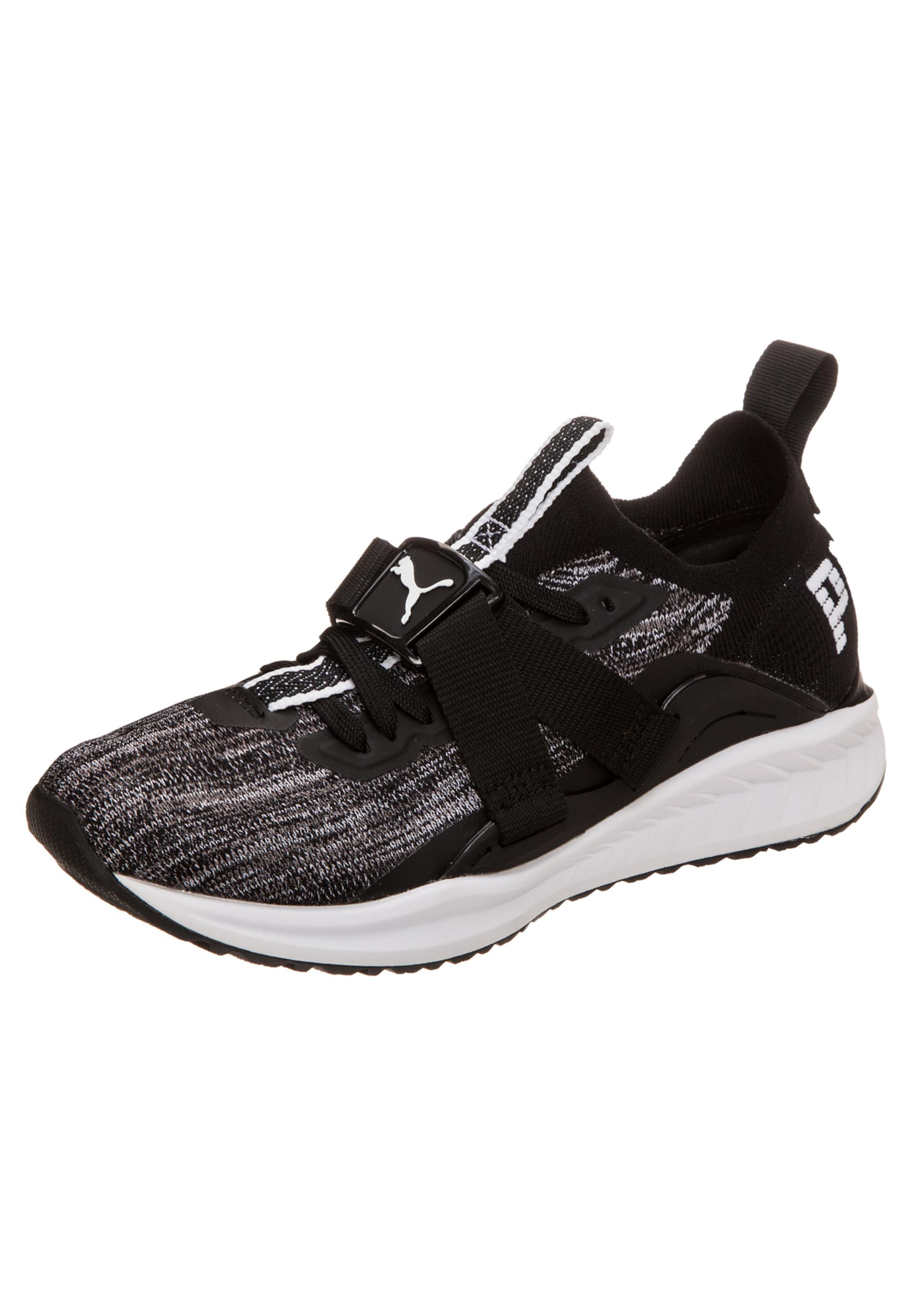 PUMA  Ignite evoKNIT Lo 2  Sneaker