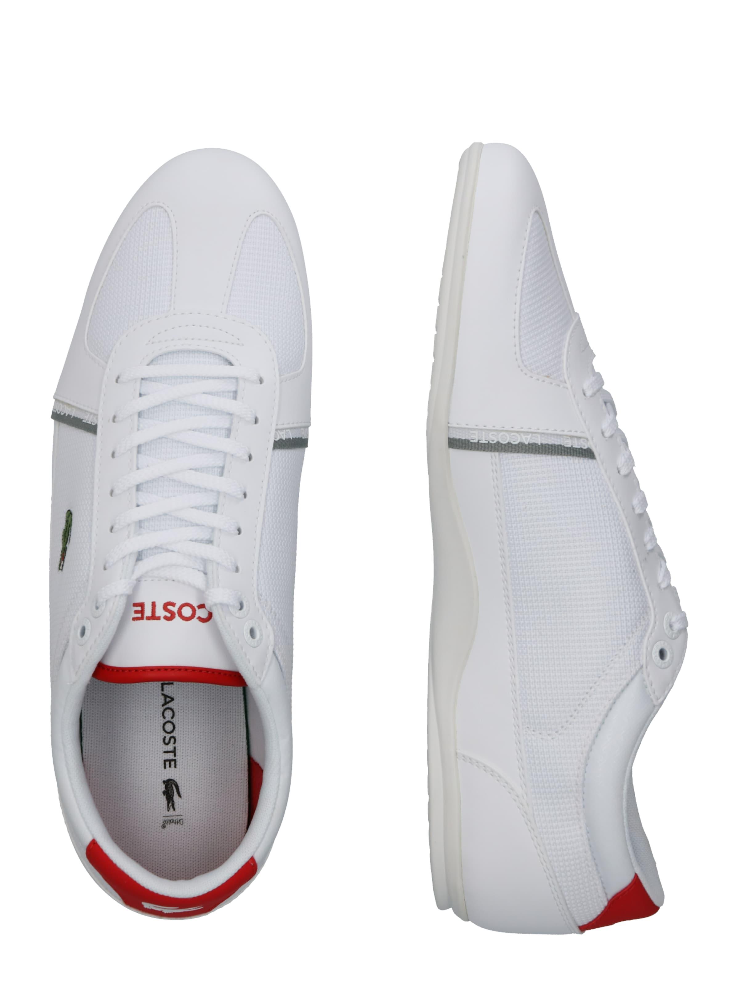 319 1 Lacoste 'evara Sport RotWeiß In Sneaker Cma' F1TlKJc