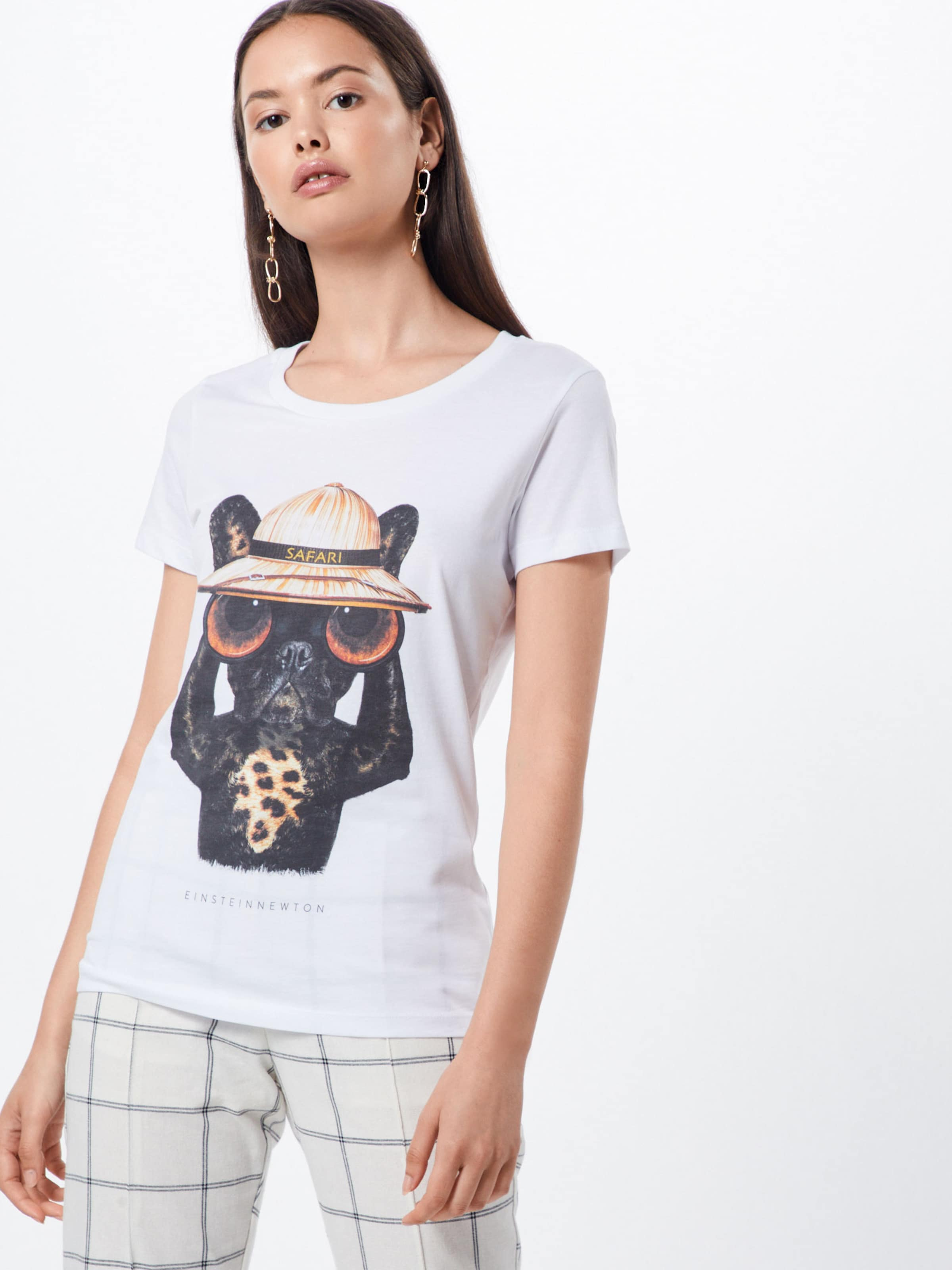 T 'safari Mélange CouleursBlanc Einsteinamp; Newton De En Dog' shirt dEBQCoeWrx