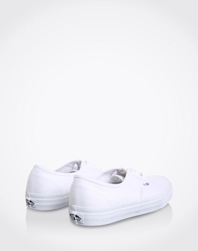 VANS Low Sneaker 'Authentic'