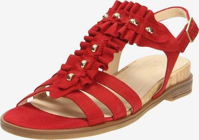 GABOR Sandalen/Sandaletten in rot: Frontalansicht