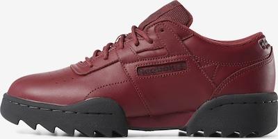 Reebok Classic Sneaker in weinrot / schwarz: Frontalansicht