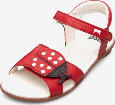 CAMPER Sandalen 'Right' in rot, Produktansicht