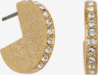 DKNY Ohrringe 'Solid Hoop ER (GL)' in goldgelb, Produktansicht