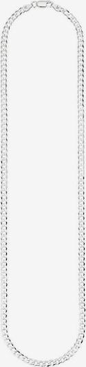 BRUNO BANANI Kette 'B0033N/S0/00/55' in silber, Produktansicht