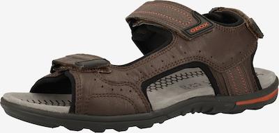 GEOX Trekingové sandále - hnedé, Produkt