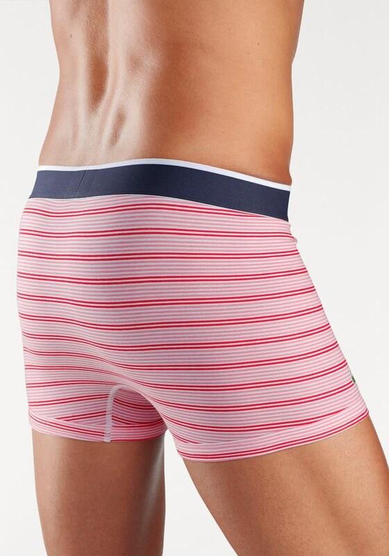LACOSTE Lacoste Boxer »Trunk Stripe« (3 Stück)