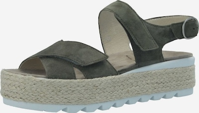 SEMLER Sandalen/Sandaletten in grün, Produktansicht
