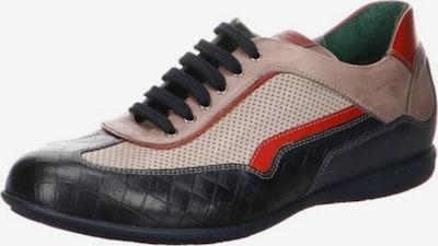 Galizio Torresi Schnürschuh in beige / dunkelblau / rot, Produktansicht