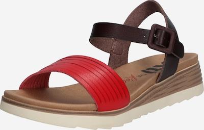 Xti Sandale in rot / schwarz, Produktansicht