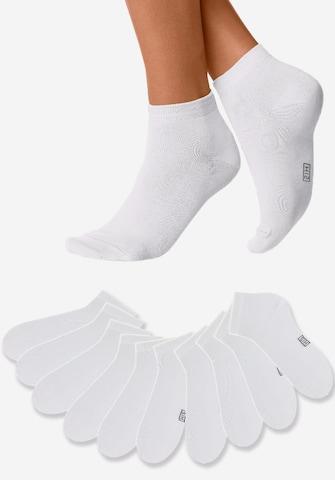 H.I.S Socks in White