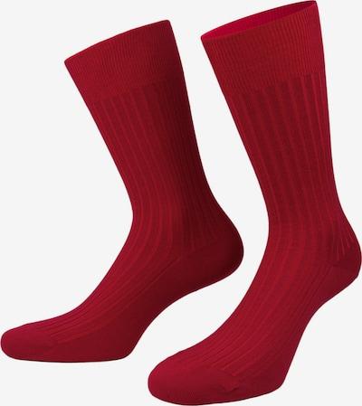 PATRON SOCKS Socken 'Ehrenfeld' in hellblau / pink / bordeaux, Produktansicht