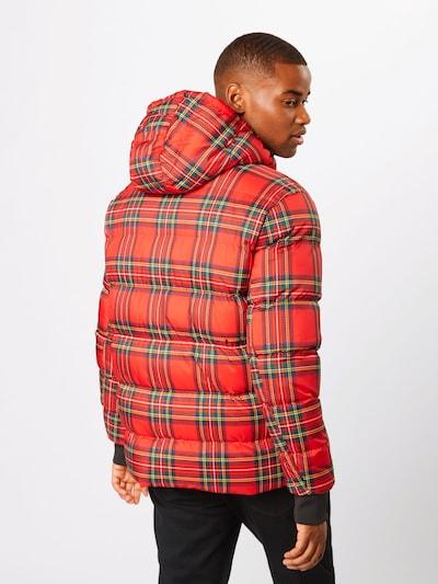Urban Classics Zimska jakna 'Hooded Check Puffer Jacket' | rdeča / črna barva: Pogled od zadnje strani
