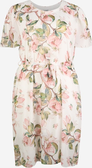 Z-One Kleid 'Florina' in mischfarben, Produktansicht