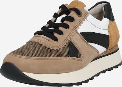Paul Green Sneaker in beige / braun / schwarz / weiß, Produktansicht
