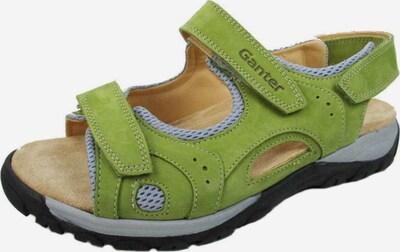 Ganter Sandalen in hellgrau / hellgrün, Produktansicht