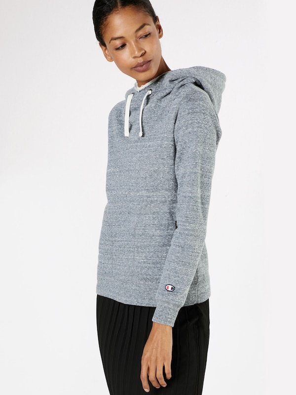 Champion Authentic Athletic Apparel Sweater 'Hooded Sweatshirt'