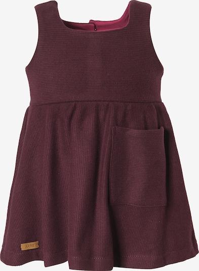 pure pure by BAUER Kleid in burgunder, Produktansicht