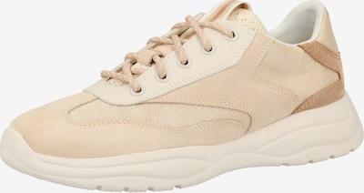GEOX Sneaker in hellbeige / dunkelbeige, Produktansicht