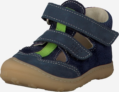 Pepino Schuhe 'Ebi' in navy / limette, Produktansicht