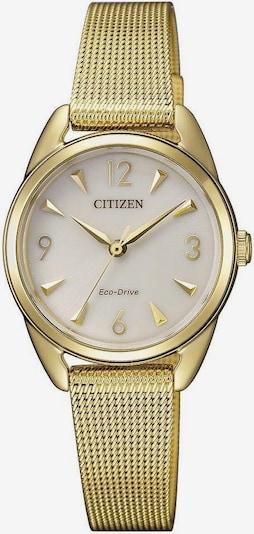 CITIZEN Uhr 'EM0687-89P' in gold: Frontalansicht
